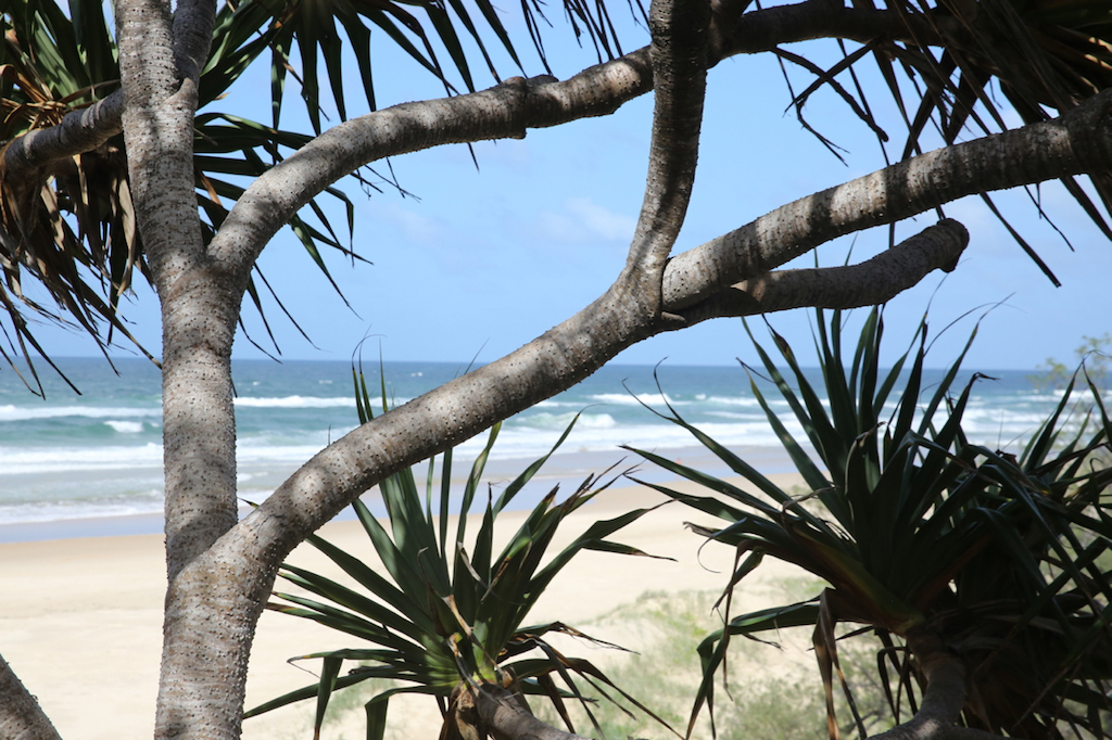 Noosa's eastern beaches